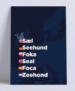 sael-moerkeblaa